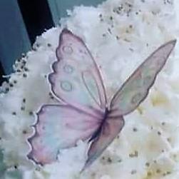 Ateli de papel arroz cida blaz borboleta 54 b borboleta 54 b altavistaventures Image collections